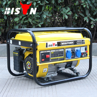 BISON(CHINA) gasoline generator lt3000cl 240v 50hz ats panels