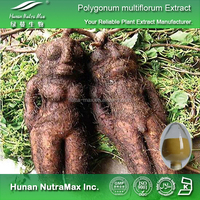 100% Pure Polygonum multiflorum Root Extract 12:1