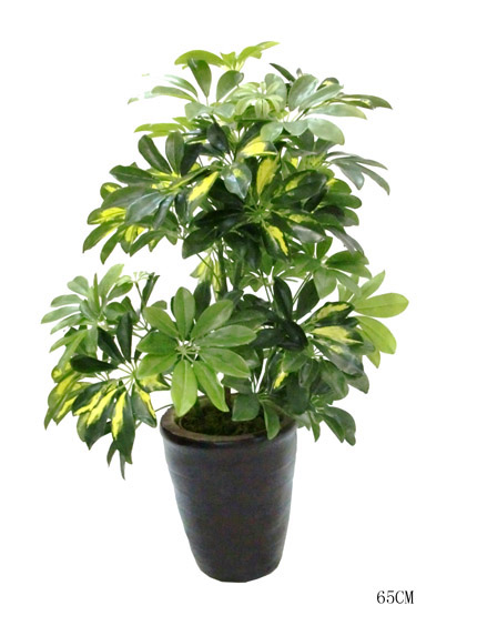 Wholesale Green Artificial Plant Decorative Make Cheap