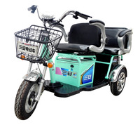 hot sell 2 seats battery electric rickshaw for passenger, auto tricycle