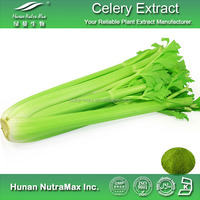 Get Free Sample Celery Juice Powder , Celery Seed Extract , Celery Extract Powder