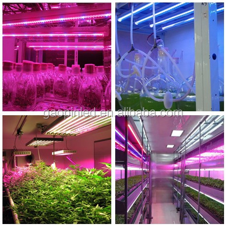 Eshine Systems T8 blue/red Tube Plant Led Grow Light Full Spectrum