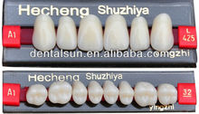 Ordinary Dental Multi-Layer false teeth