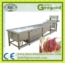 Top quality blue berry washing machine / fruit cleaning machine