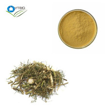 HIgh Quality Natural Artemisiae Apiaceae Extract Sweet Wormwood Herb