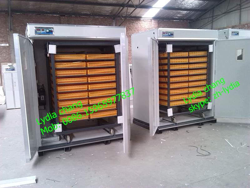 3000 egg incubator/3168 chicken egg incubator/ZH-3168 incubator with CE (Lydia chang: 0086.15965977837)