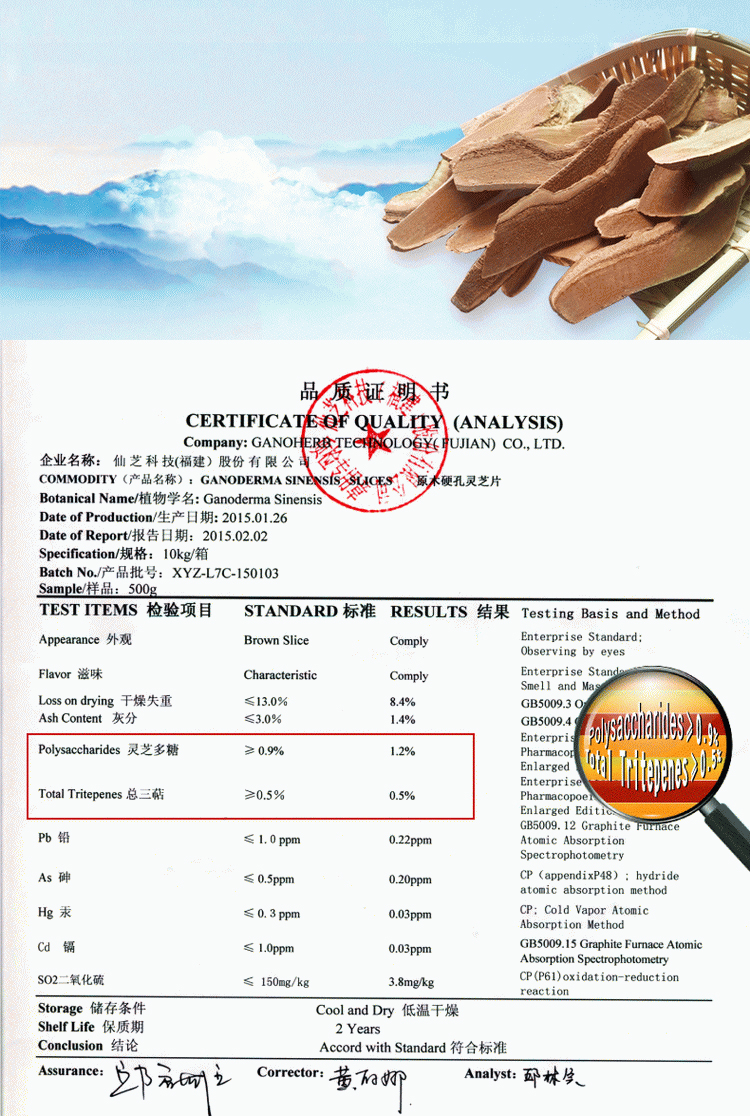 Reishi Mushroom Powder; Ganoderma Lucidum Mycelium Powder; Lingzhi Powder