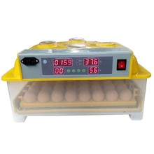 High quality mini incubator/mini egg incubator/poultry incubator machine
