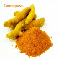 Reliable supplier prodive turmeric root extract with reasonable price