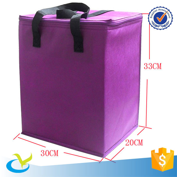 Cheap 80g non woven6 bottles insulated disposal cooler bag
