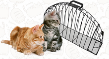 2017 hot sale hight quality bath the cat cage cheap metal 2 door cat cage