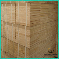 On sale , huge quantity cheap paulownia wood logs