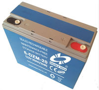 Electric Vehicle Lead Acid Battery Pack(48V 20Ah)