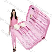 beauty cosmetic case/professional beauty case trolley/beauty animel sex girl mobile phone case