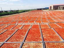 China Dried Fresh Goji Berry