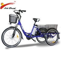 2017 New design Big size 3 wheel electric tricycle electric cargo trike for old people (JSE506)