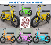 japanese quality electric tricycle rickshaw electric rickshaw for cargo