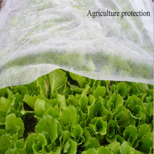 Pp non woven breathable plant protection cover/plant pot
