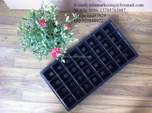Rectangular PS Plastic Type Black Plastic Plant Seed Nursery Propagation Tray