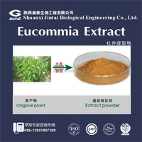 10% 25% 80% 100% natural Cortex Eucommiae/Eucommia leaves extract/Eucommia extract