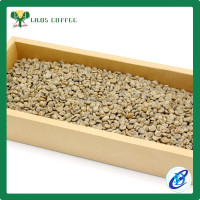High quality Bulk green coffee beans wholesale