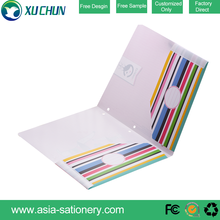 Factory sell Striped cover file folder office stationary plastic folders wholesale pp file folder
