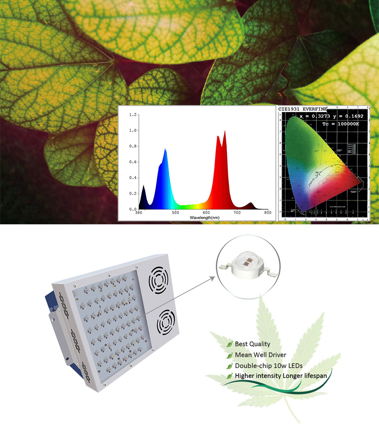 Wholesale abibaba hydroponics system vertical ETL certification full spectrum 300w led growing light for indoor plant growth