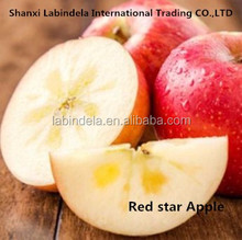 fresh apple fruit bulk red star apple on sale