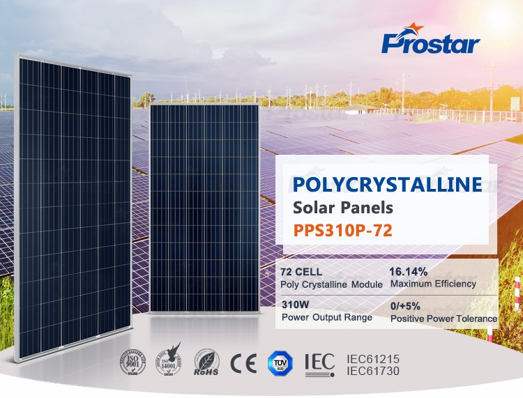Prostar A grade 4BB 25 years warranty best price poly solar panel 310w