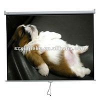 Matte white fabric projection screen for business