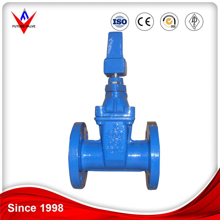 ANSI Cast Iron Chain Wheel Sluice Resilient Seated Gate Valves