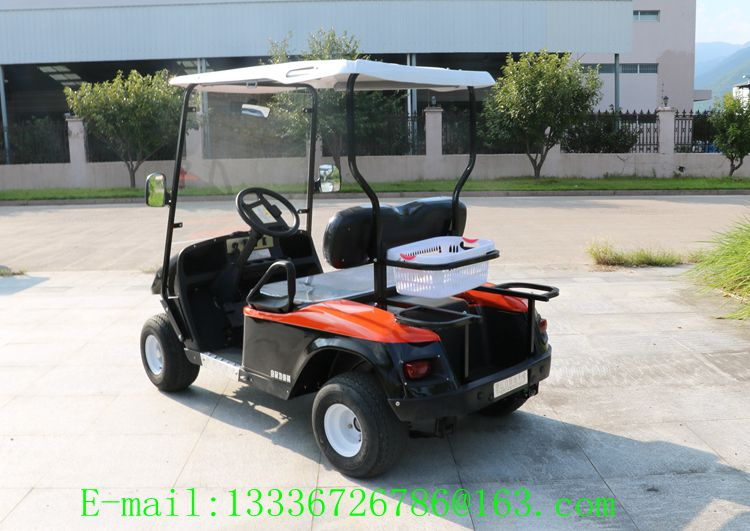 Chinese electric golf cart and 2 seater electric car /electric golf car price