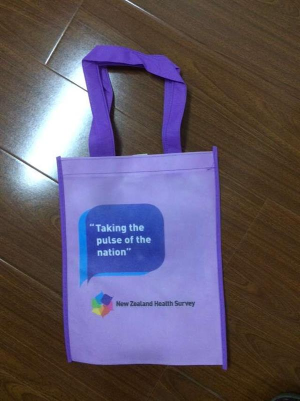 customized reusable wholesale pp shopping bag with zipper With Strong Handle