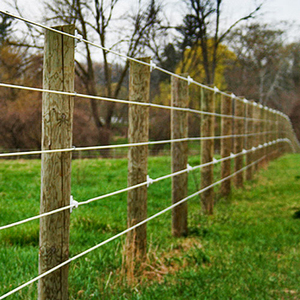 Fentech High Strength Flexible Electric Fence with Wood Rail Fence