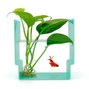 Custom acrylic fish tank decorations/aquarium fish tank