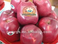 HUANIU kashmir apple