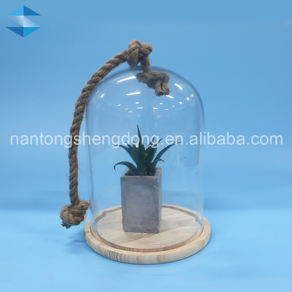 large glass dome cover wooden base flower pot with handle