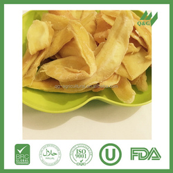 Best-selling new coming dried mango chips 18mm