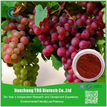BV Certificated anti wrinkle grape seed extract with CE certificate