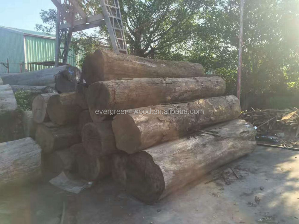 raw wood logs natural teak wood burma teak