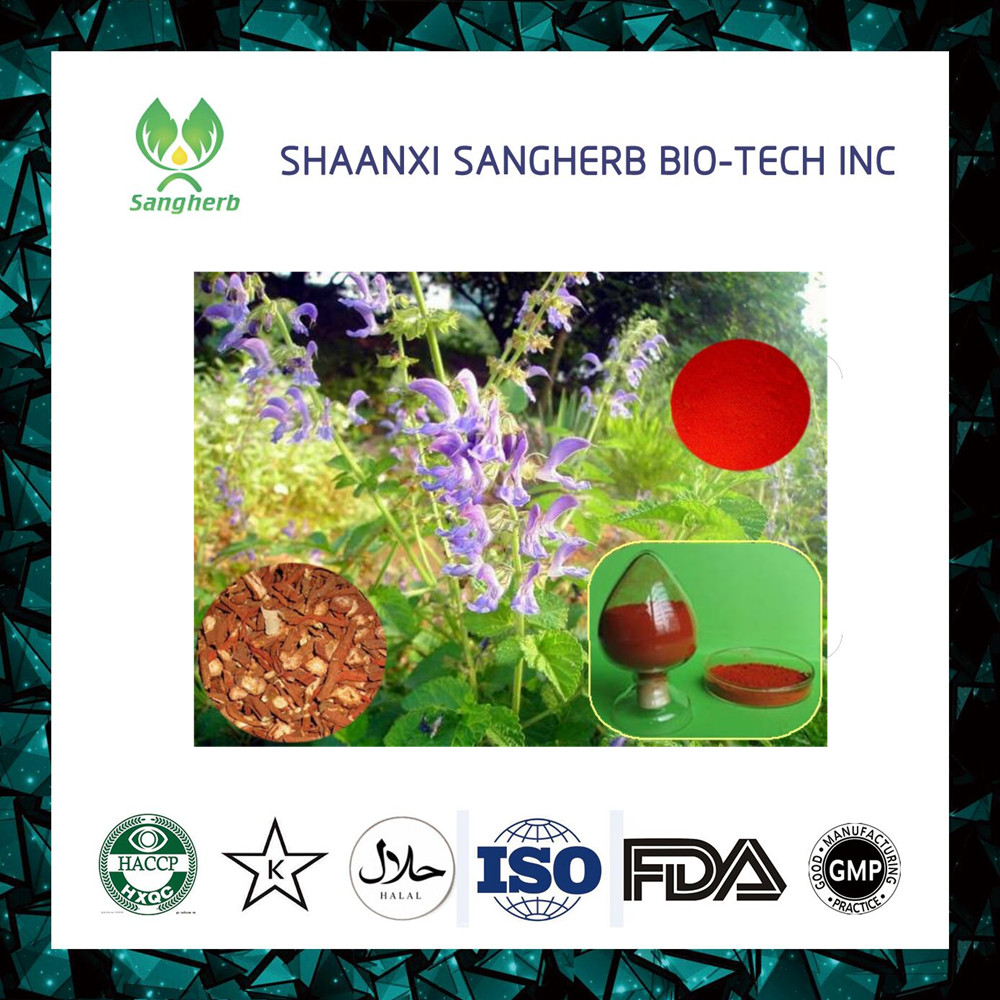High quality 100% Natural plant extract Salvia Miltiorrhiz Extract Powder With 2% Triterpene Glycosides