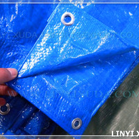 8x8 800D Blue Pe Plastic Sheet