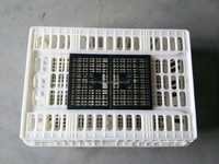 plastic chicken layer cage for sale