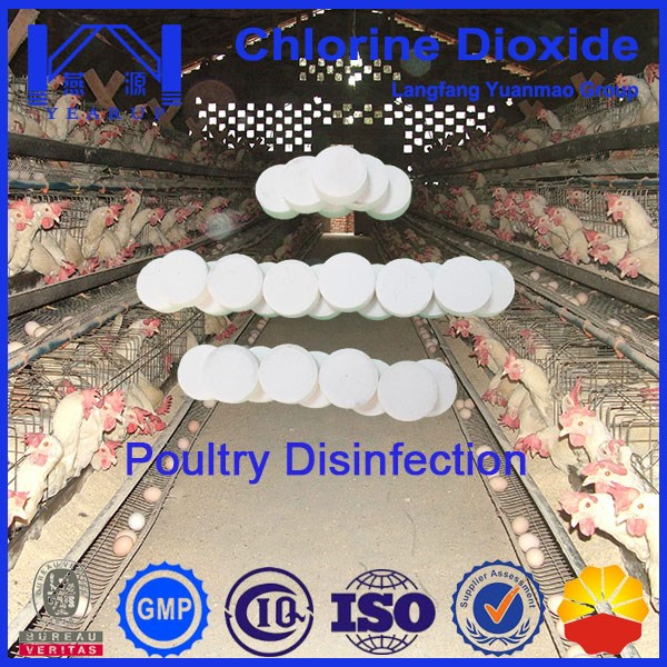 Safe and Effective Chlorine Dioxide Disinfectant for Poultry Disinfection