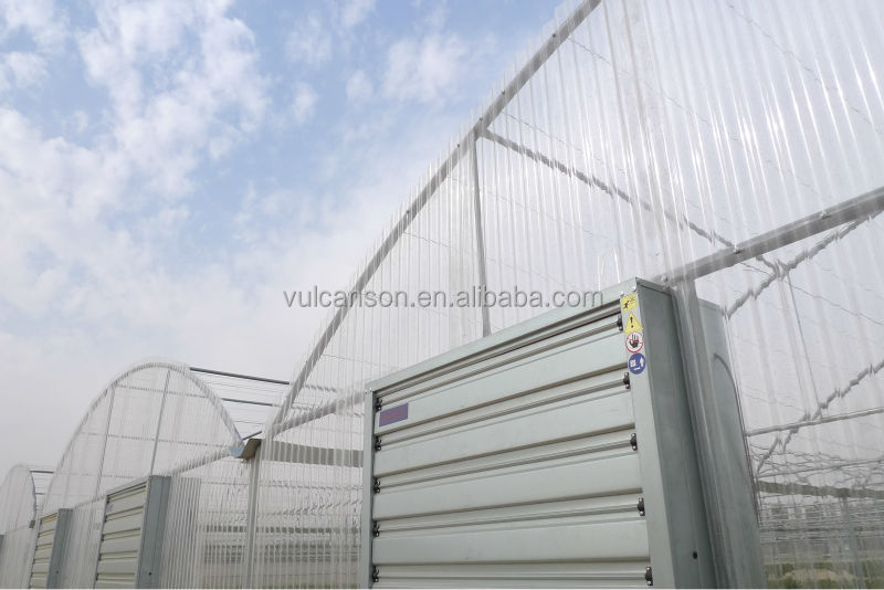 Garden Green House (Polycarbonate Valuview ROMA)