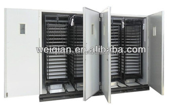 large-scale industrial automatic chicken eggs laneway couveuse WQ-16896