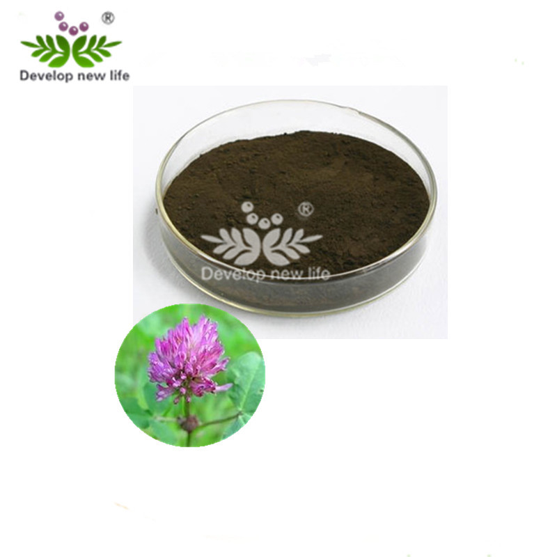 ISO Red Clover Flower Extract 40% isoflavones with good quality