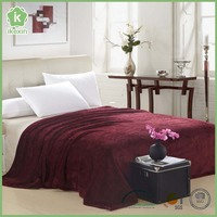 Anti Static Warm Winter Coral Fleece Blanket