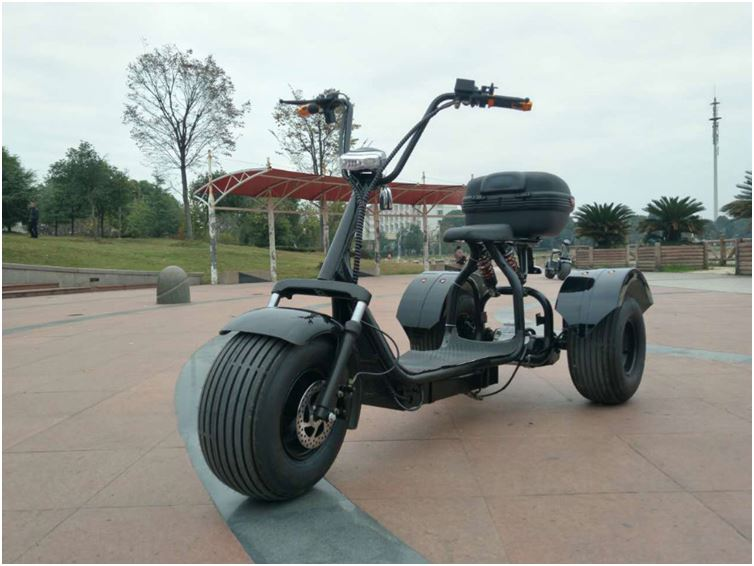 2017 citycoco 3 wheels 200km off road 3 wheel 200cc trike with CE