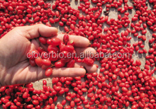 Factory supply 10:1 Asiatic Cornelian Cherry extract/Dogwood powder in stock